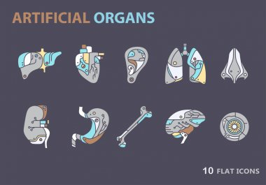 Flat icons - artificial organs 7