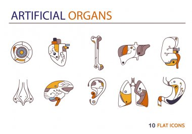 Flat icons - artificial organs 3