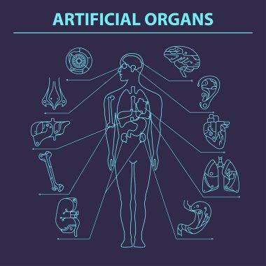 Artificial organs - Thin line 9