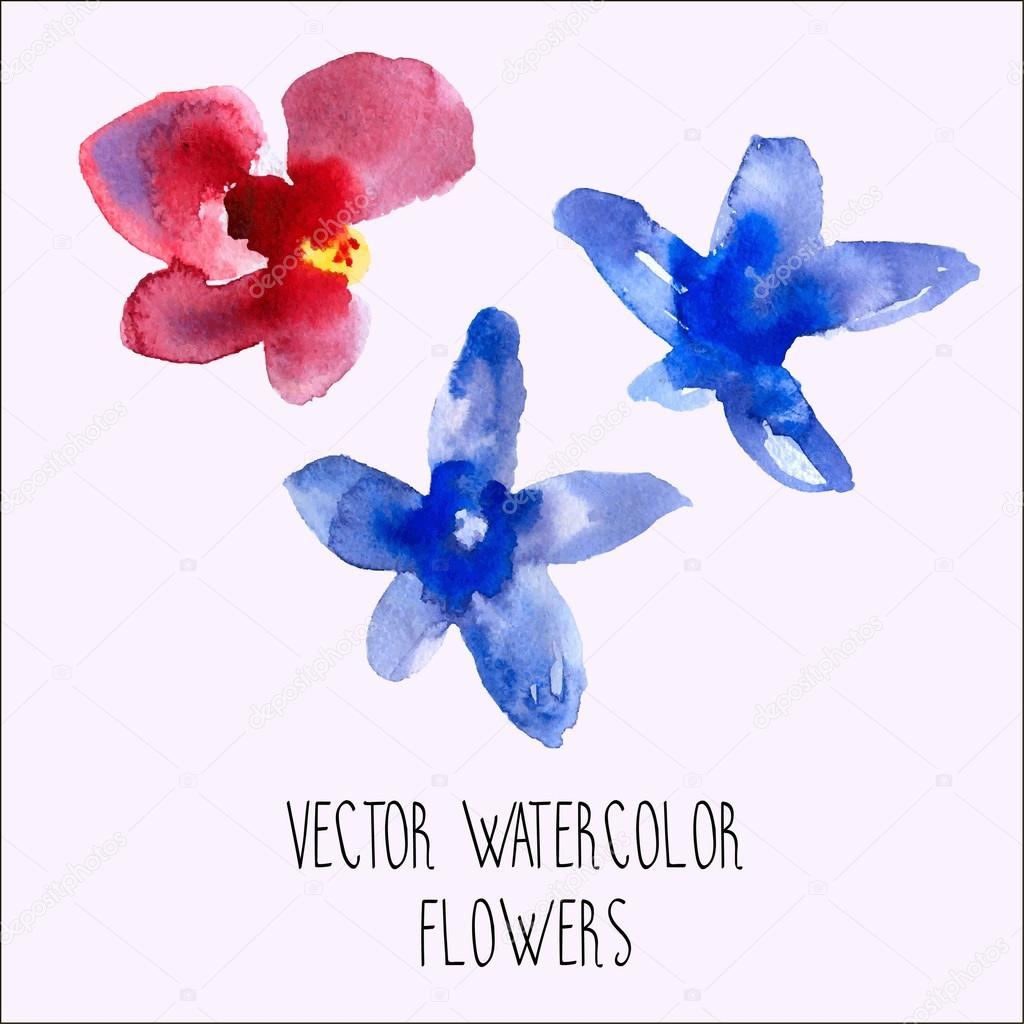 Vector watercolor orchid flowers pack