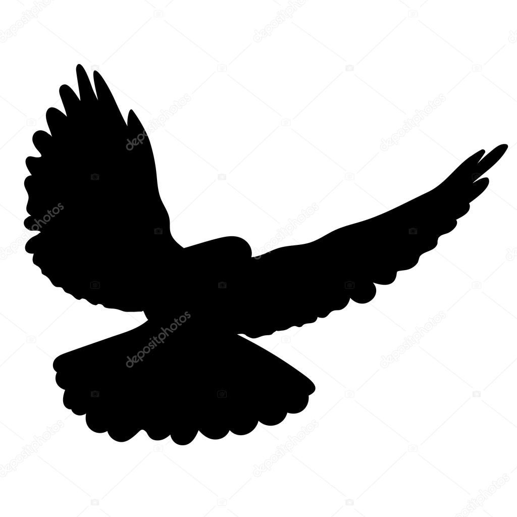 Векторный силуэт птицы-голубя в полете . — Векторное ...