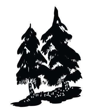 Pine tree black silhouettes - vector illustration.