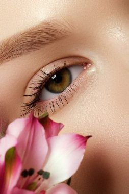 Gorgeous young model, beautiful woman eye with fresh pink  flower, part of female head, sexy girl with stylish look, spa and beauty background