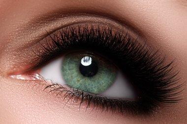 Macro shot of woman's beautiful eye with extremely long eyelashes. Sexy view, sensual look. Female eye with long eyelashes. Eyelashes extensions. Perfect make-up