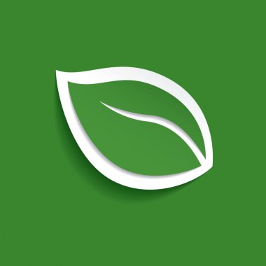Eco green. Green leaf logo. Vector