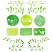 Watercolor green logos and laurel leaves set.