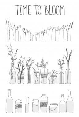 Set of bottles and jars with water and flowers.