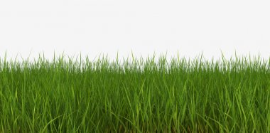 3d illustration horizon grass lawn stock vector