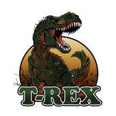 Fotografie Agressive t rex illustration