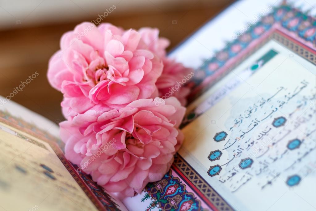 Quran And Rose Stock Photo C Aiscream 108116830