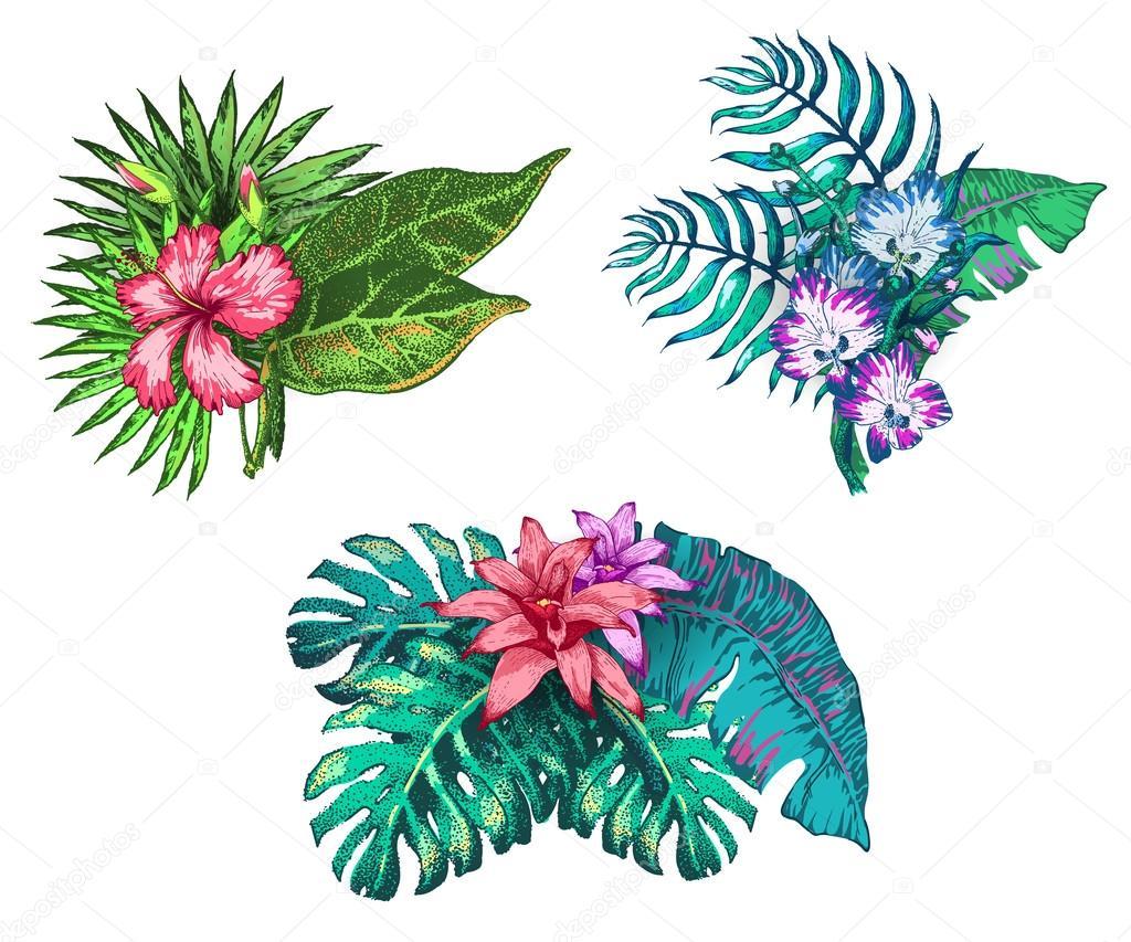 Dibujo De Flores Tropicales Archivo Imagenes Vectoriales C Katyr