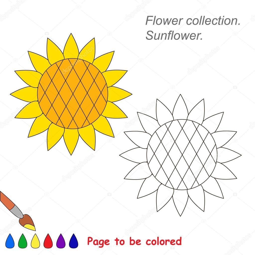 Girasol en dibujos animados de vector para colorear — Vector de ...