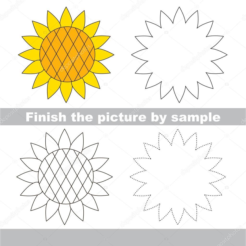 Sonnenblume. Zeichnung-Arbeitsblatt — Stockvektor © Anna_Mikhailova ...