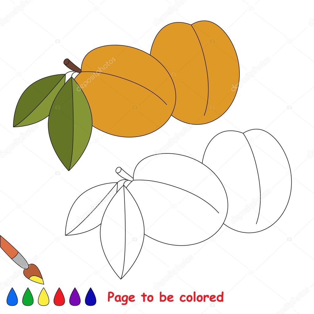 Kayısı Karikatür Renkli Sayfa Stok Vektör Annamikhailova