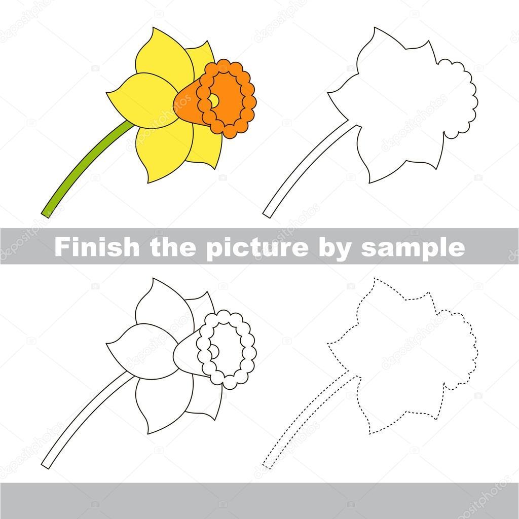narzissen. arbeitsblatt zeichnen. — stockvektor © anna