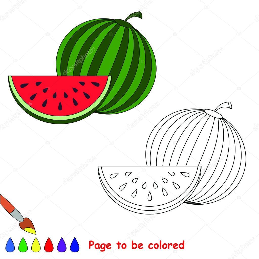 Renkli Olması Için Vektör Karpuz Stok Vektör Annamikhailova