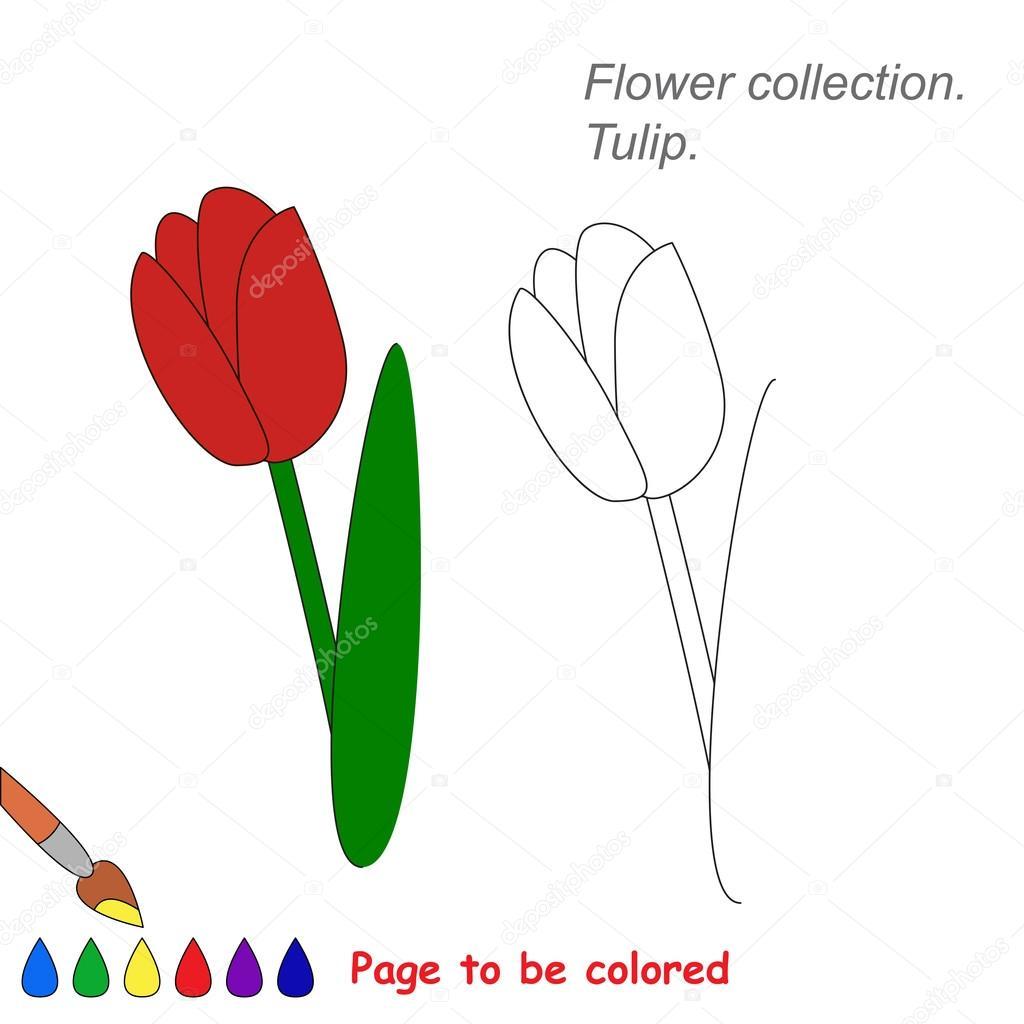 Lale Renkli Vektör Karikatür Stok Vektör Annamikhailova 95462768