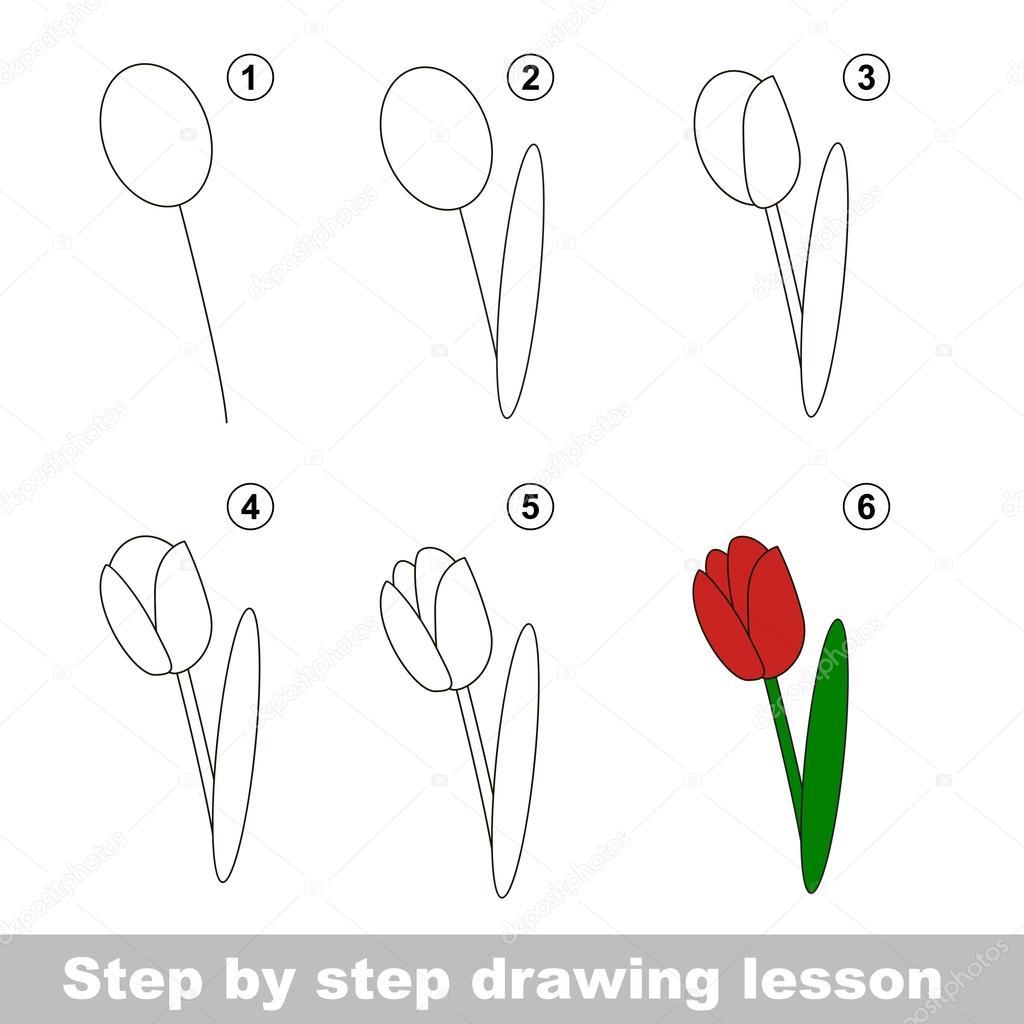 Tutoriel De Dessin Comment Dessiner Une Tulipe Image Vectorielle