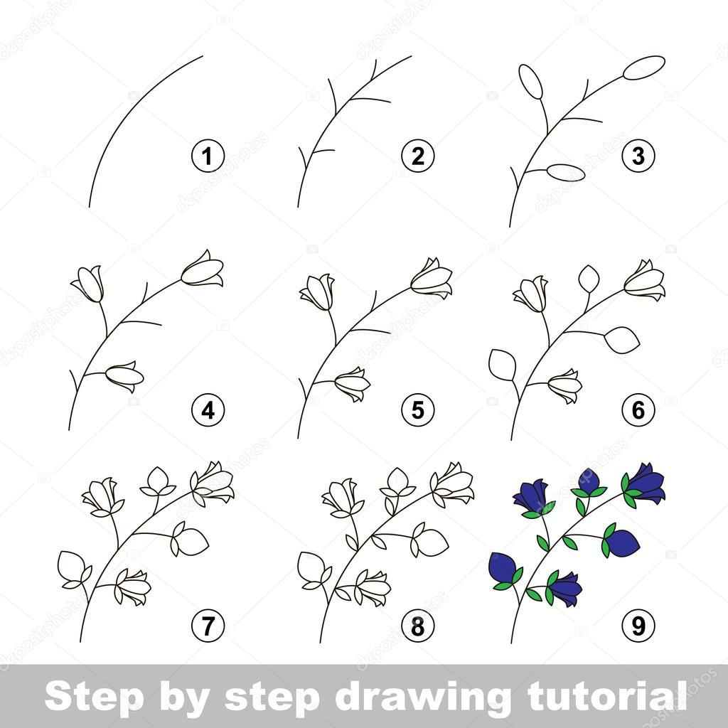 Drawing tutorial how to draw a bluebell stock vector for How to make doodle art