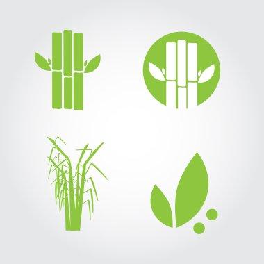 Sugar cane. EPS 10 vector illustration
