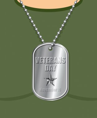 Veterans Day. Military Medallion from soldier in neck. Soldiers