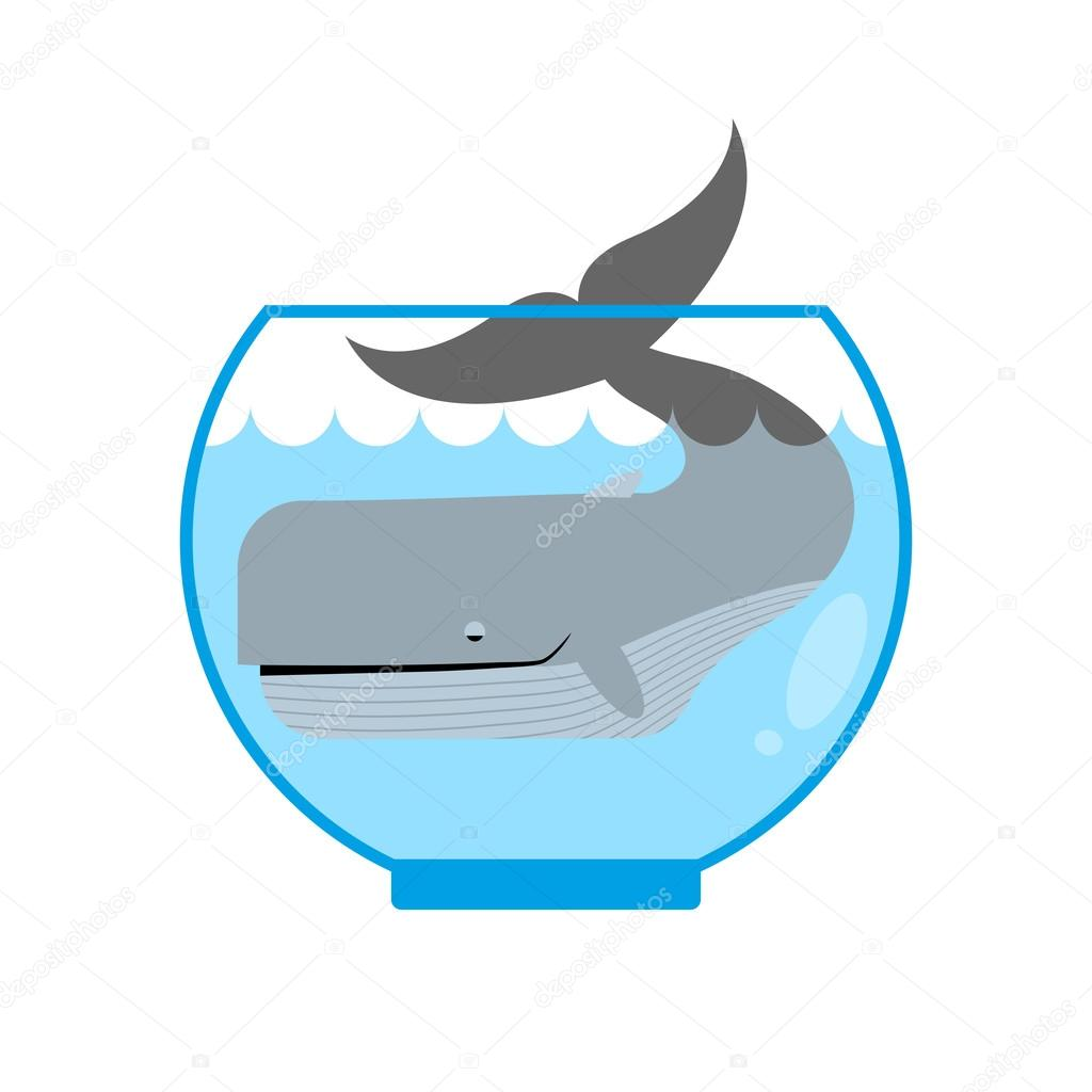 Whale in  Aquarium. Large sea animal is not put into Aquarium. T