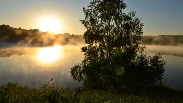 mlha nad vodou. ranní mlha. hustá ranní mlha nad jezerem. kolem jezera rostou břízy. Krajina brzy ráno teplá. slunce vychází a rozsvítí se les s rybníkem v mlze