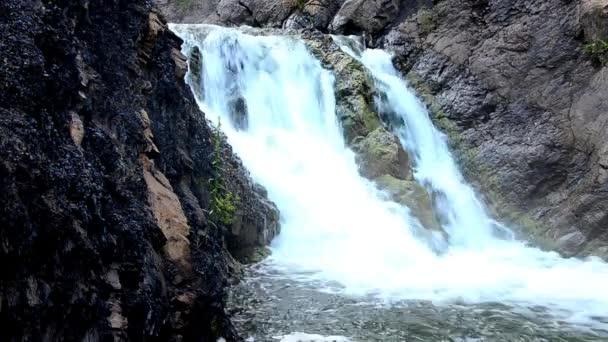 padající voda v ranní mlze. padající voda v husté ranní mlze. Voda padající z útesu. padající z výšky vody. padající voda v mlze. hustá ranní mlha v letním lese.