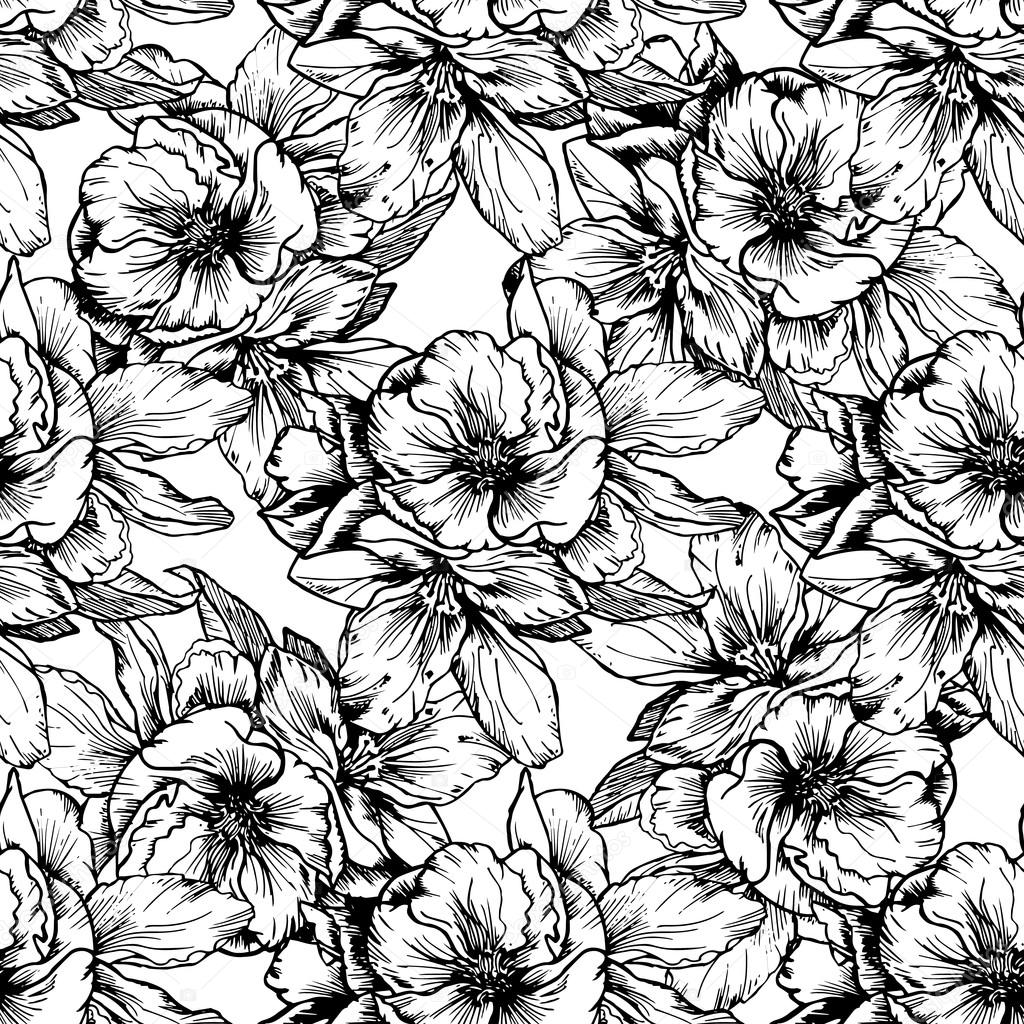 Hand Drawn Illustrations Black And White Flowers And Poppies