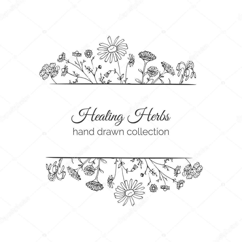 Holistic Medicine Card. Healing Herbs Illustration.