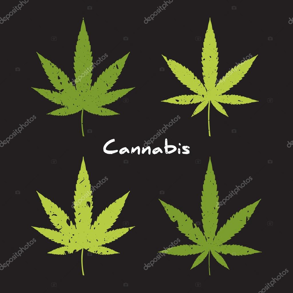 Medical marijuana hand drawn vector elements.