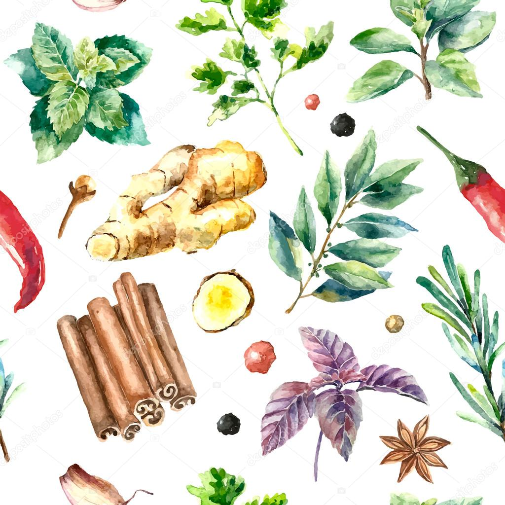 Watercolor seamless pattern of fresh herbs and spices isolated.