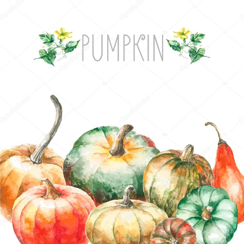 Watercolor pumpkin.