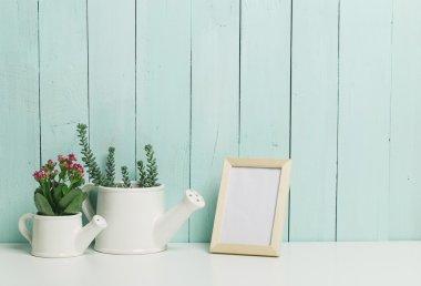 Succulents, house plants in white pots