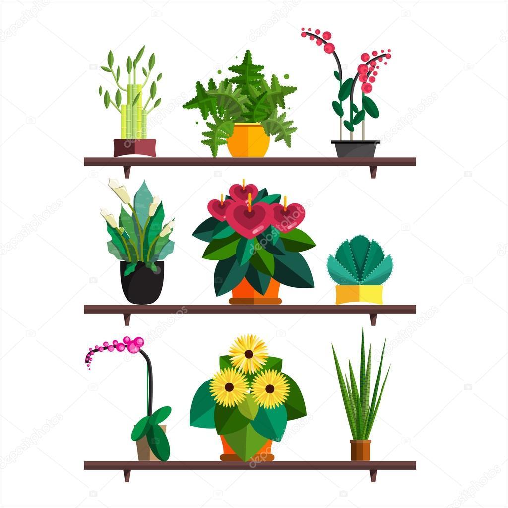 illustration des plantes d 39 int rieur d 39 int rieur et plantes de bureau dans une marmite. Black Bedroom Furniture Sets. Home Design Ideas
