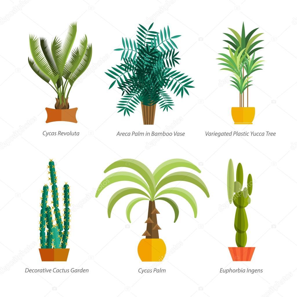 Vector conjunto de plantas casa interior rboles en for Arbol interior