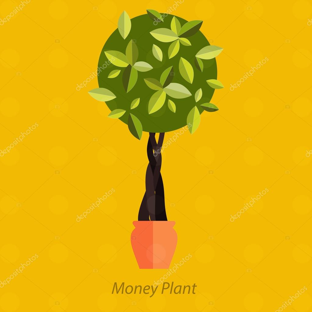 Garden plants, Potted flowers in the garden vector illustration