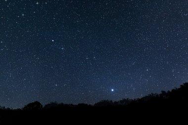Beautiful night sky Beautiful Star Field with diffraction spikes Jupiter Venus Constellations Auriga Camelopardalis Lynx Gemini Canis Minor Monoceros Leo Leo minor Cancer Perseus