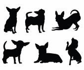 Chihuahua psa ilustrace sada