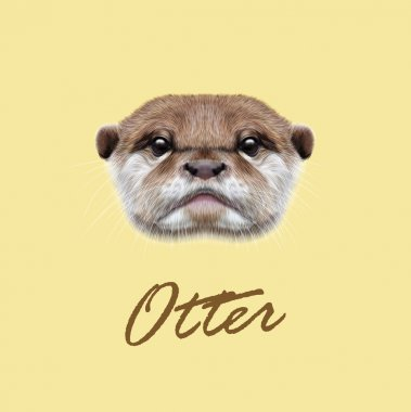 Vector Illustrated Portrait of Otter.