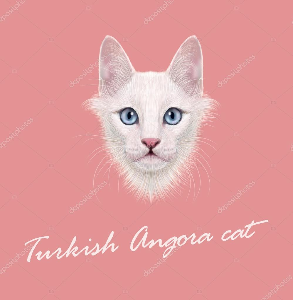 Vector Illustrated Portrait of Turkish Angora cat.