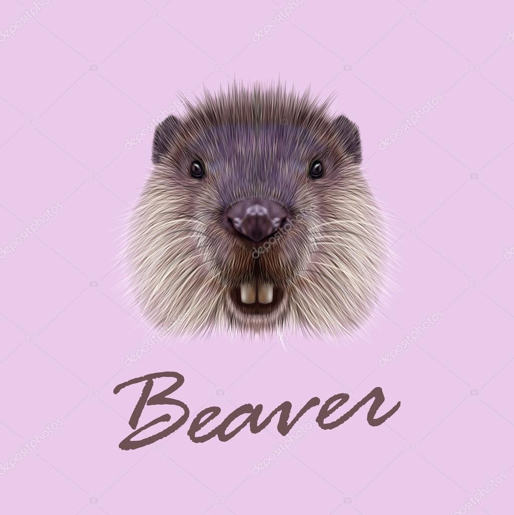 Vector Illustrated Portrait of Beaver.