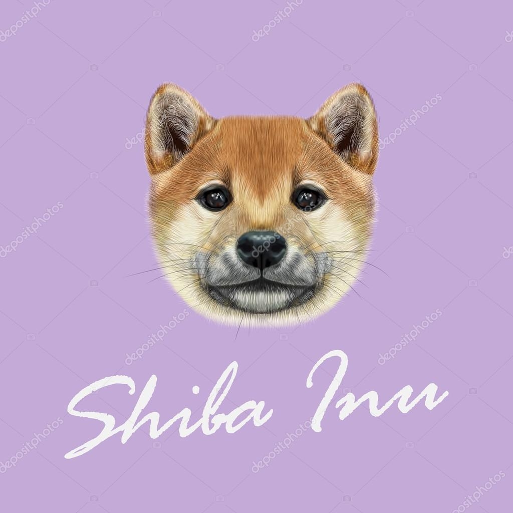 Vector Illustrated portrait of Shiba Inu Dog.