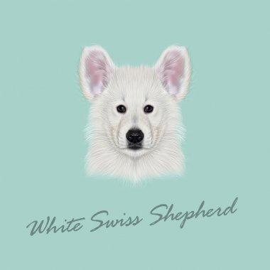Vector Illustrated Portrait of White Swiss Shepherd dog.