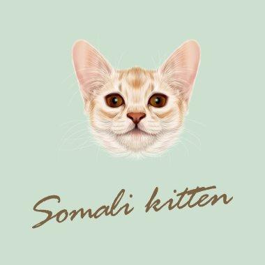 Vector Illustrated portrait of Somali kitten.