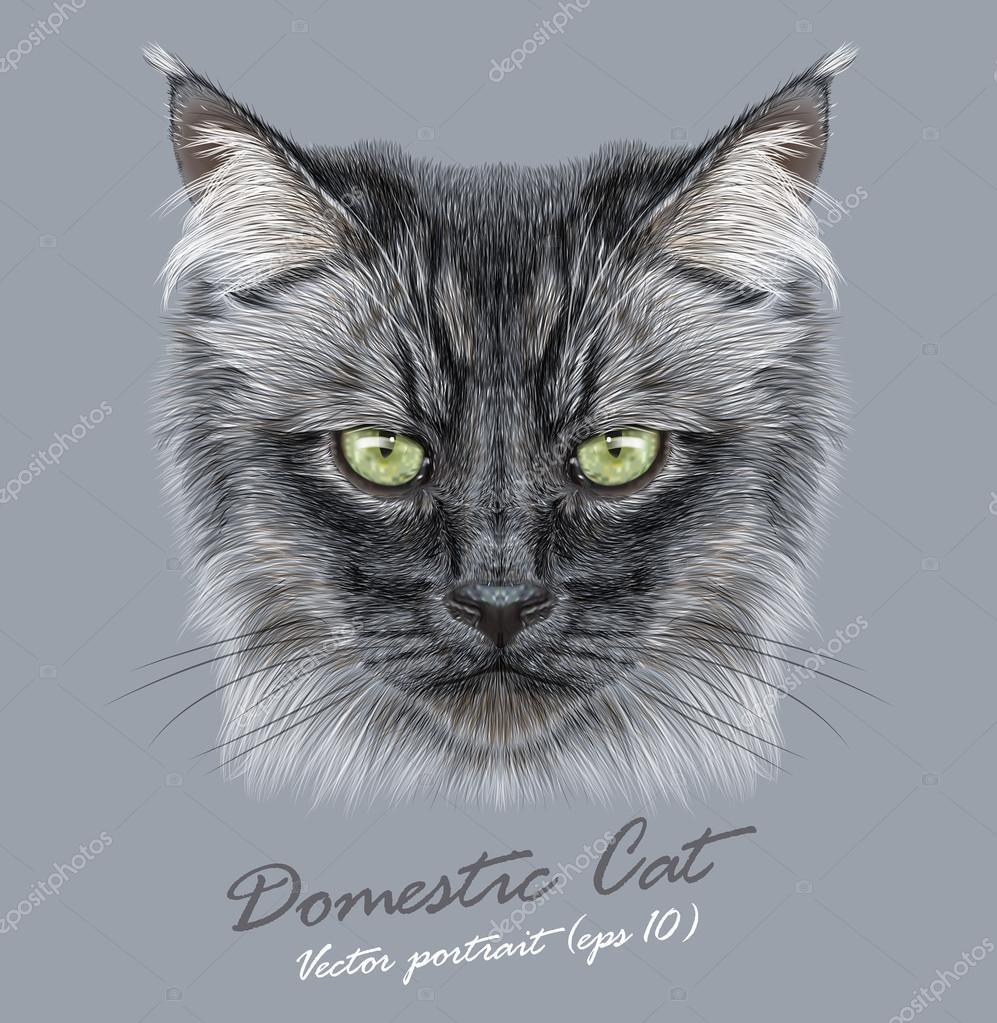 černé vlasy kočička obrázky
