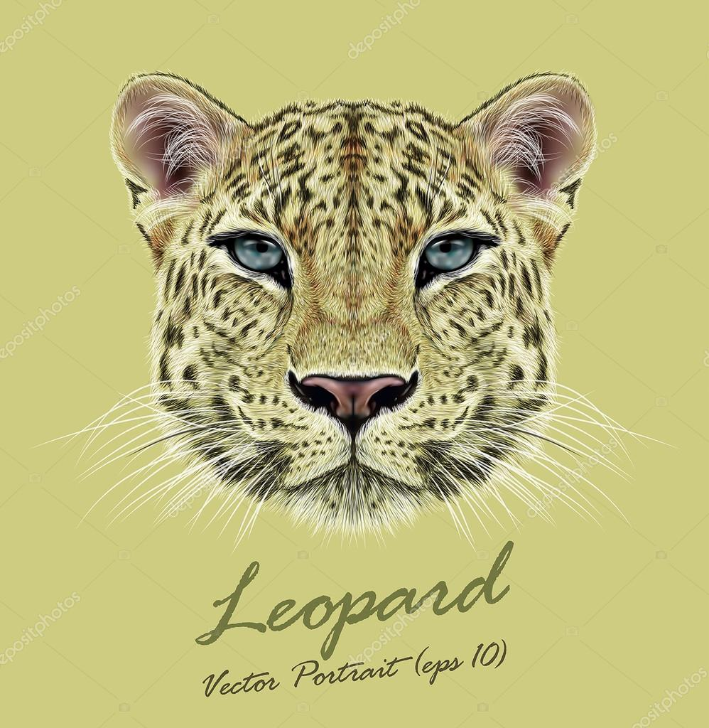 Leopard animal face. Vector African, Asian wild cat head portrait. Realistic fur portrait of exotic leopard isolated on yellow background.