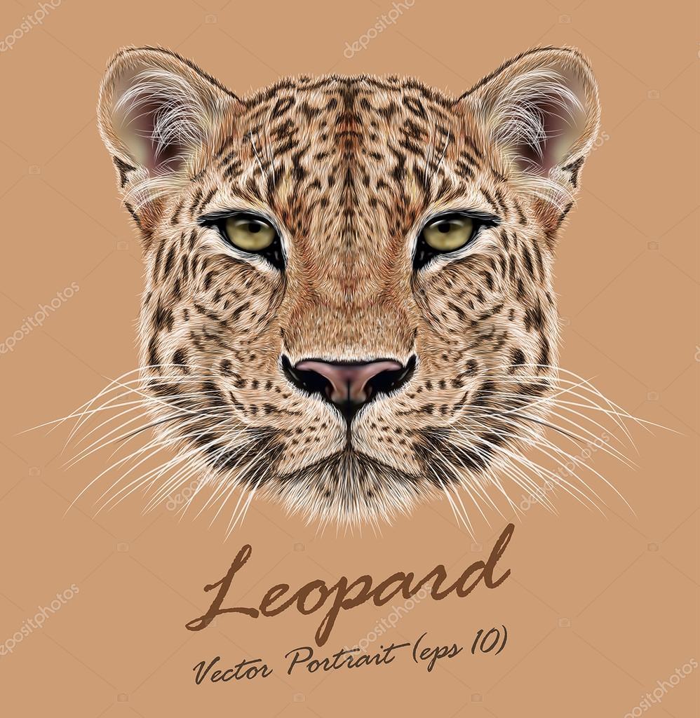 Vector Illustrative Portrait of Leopard