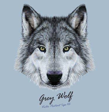 Vector Illustrative Portrait of Wolf