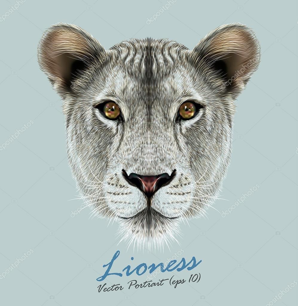 Vector Portrait of a Lioness on Blue background